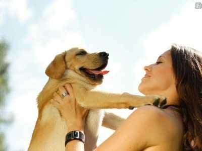 看女与狗性交_人跟狗交配 女人与狗交配卡住事件